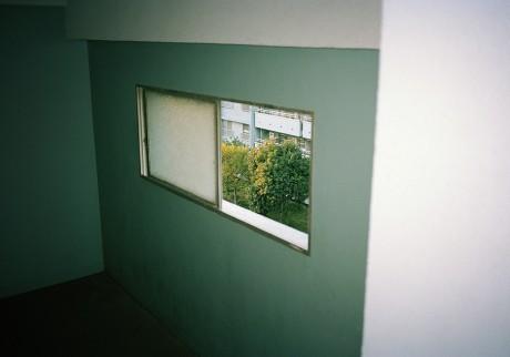 今月の写真家:安川 結子