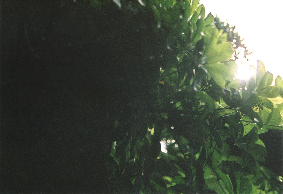 Kenji Nakata 11