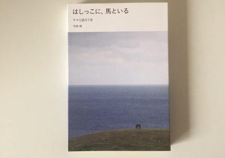 『はしっこに、馬といる ウマと話そうⅡ』河田桟(kadi books)