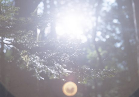 今月の写真家:中垣美沙