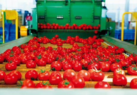 山梨・北杜より新しい形の南アルプスの農業。