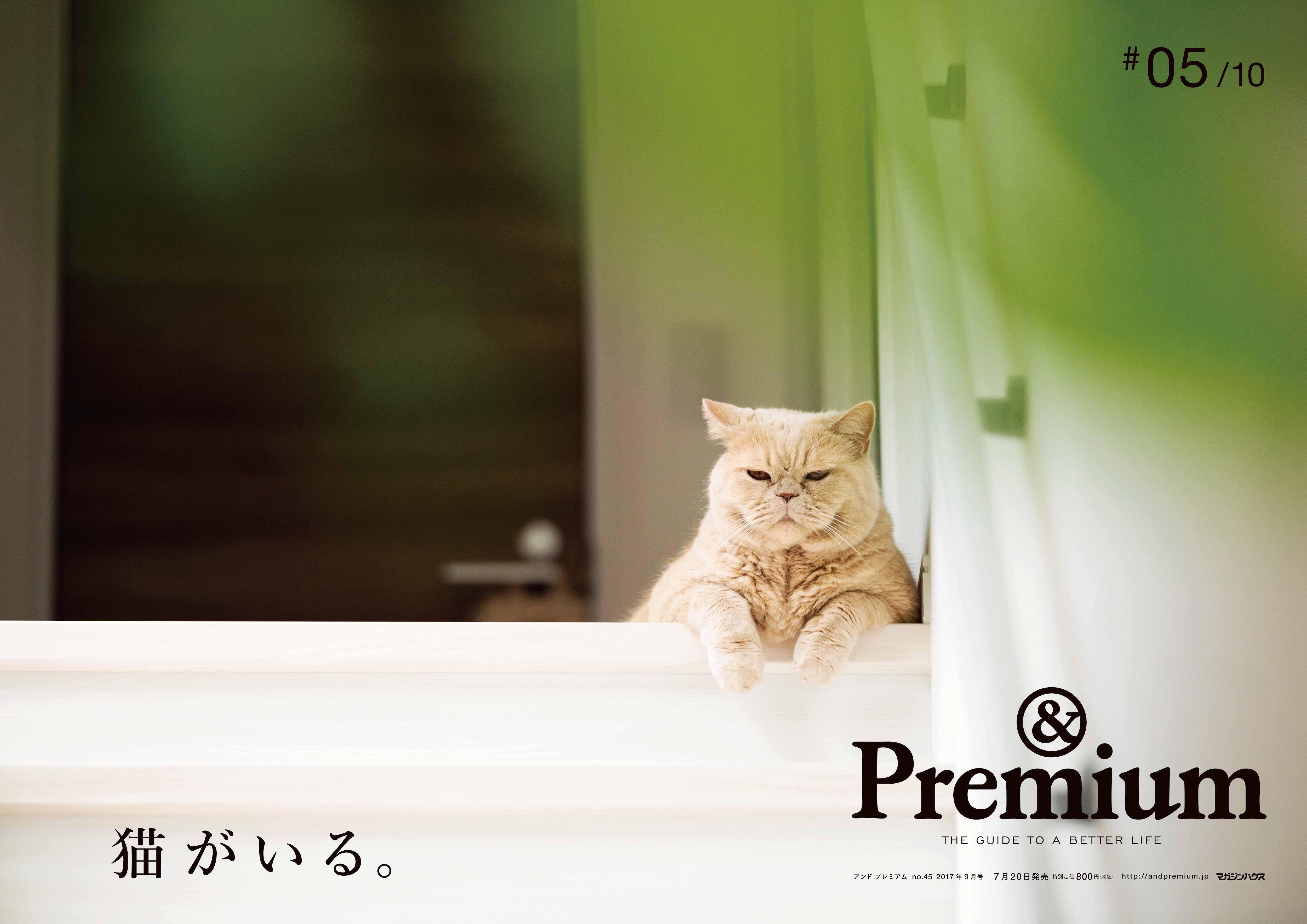&Premium045_BOポスター10_入稿