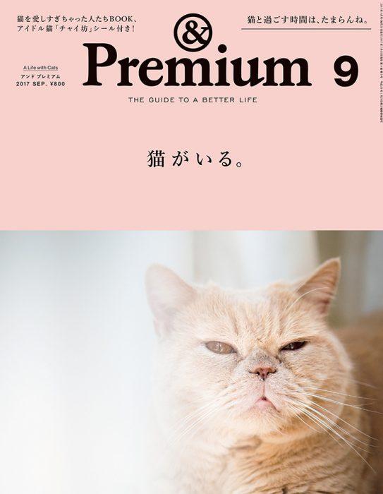 &Premium 2017 September「猫がいる。」