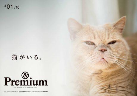 特集「猫がいる」発売記念ポスターが完成!