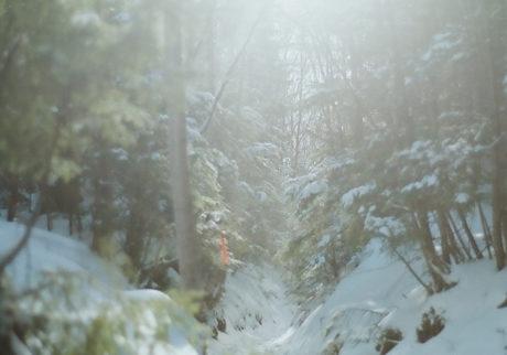 冬、山小屋  野川かさね