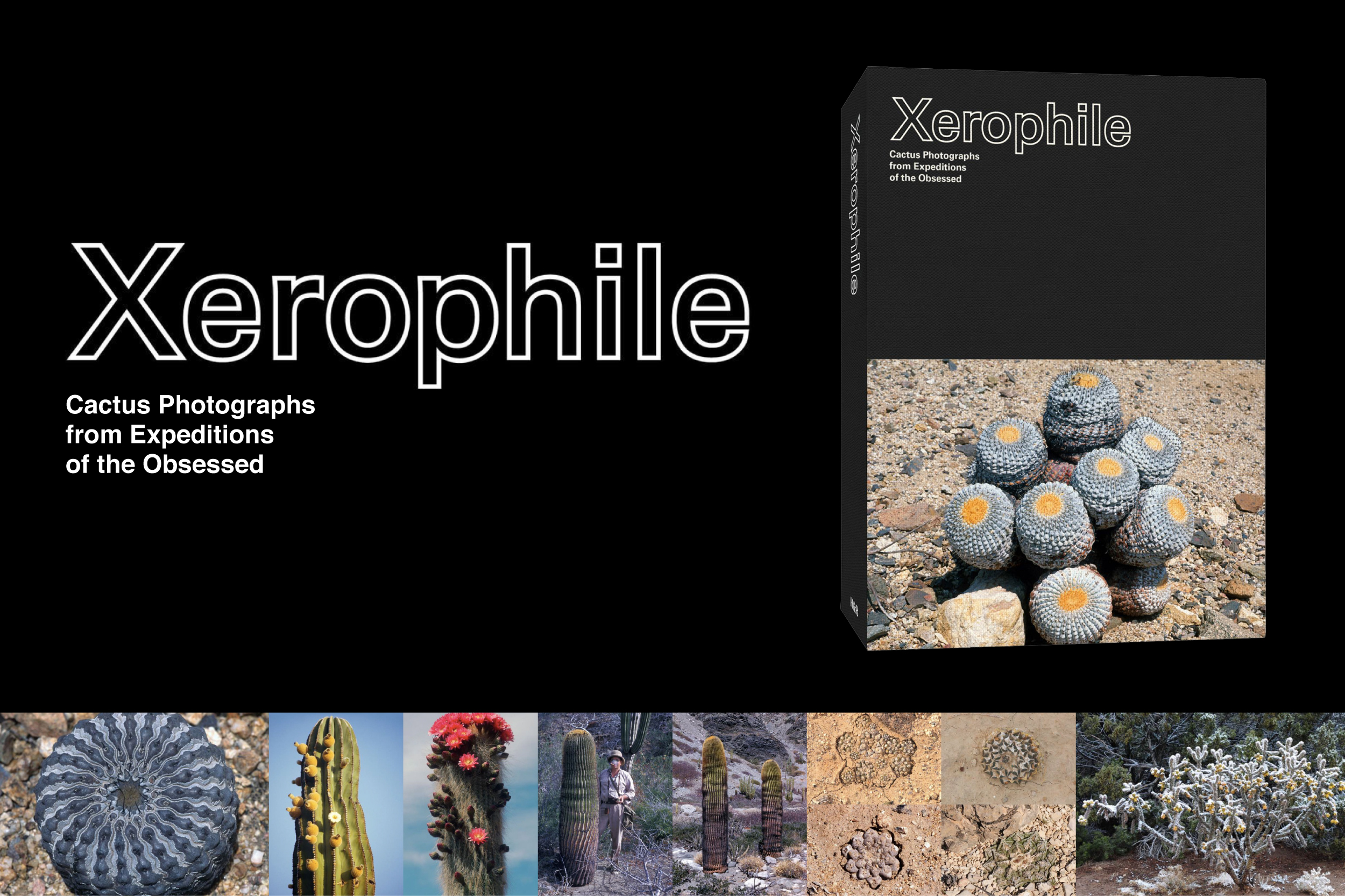 Xerophile__SNS_B