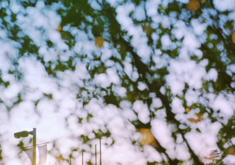 今月の写真家:MEGUMI
