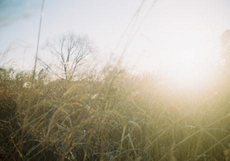 今月の写真家:山川哲矢