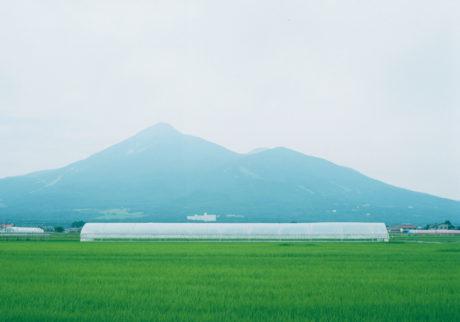 今月の写真家、今日の一枚。吉森慎之介 vol.26