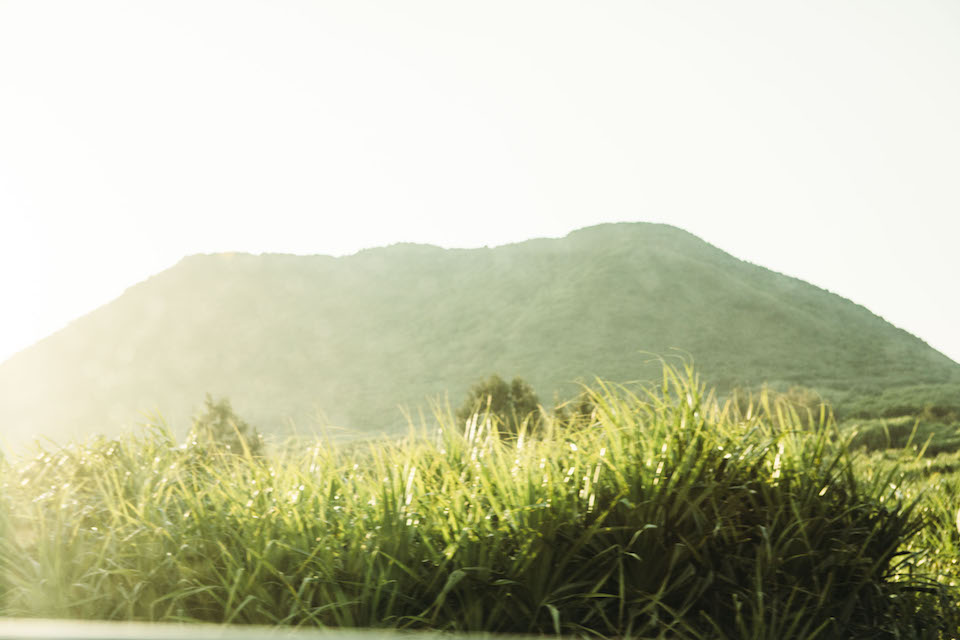 港から車を走らせるとすぐに広がる山間の風景。古見岳、テドウ山、御座岳の三山を有し、山がちで平地が少ないのも西表島の特徴。