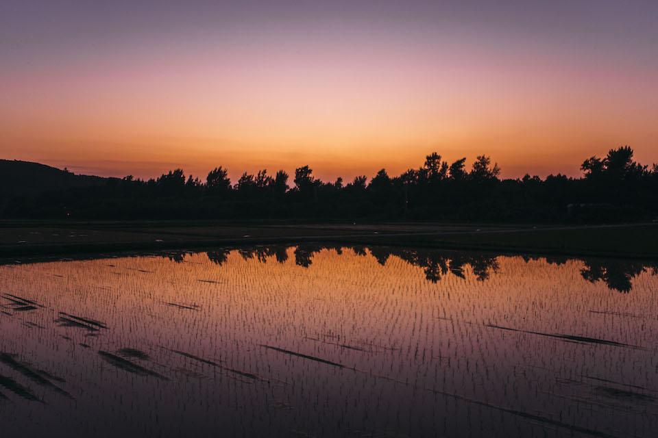 西表島で見る夕焼け。昼間とは全く違った雰囲気が島を包み込む。