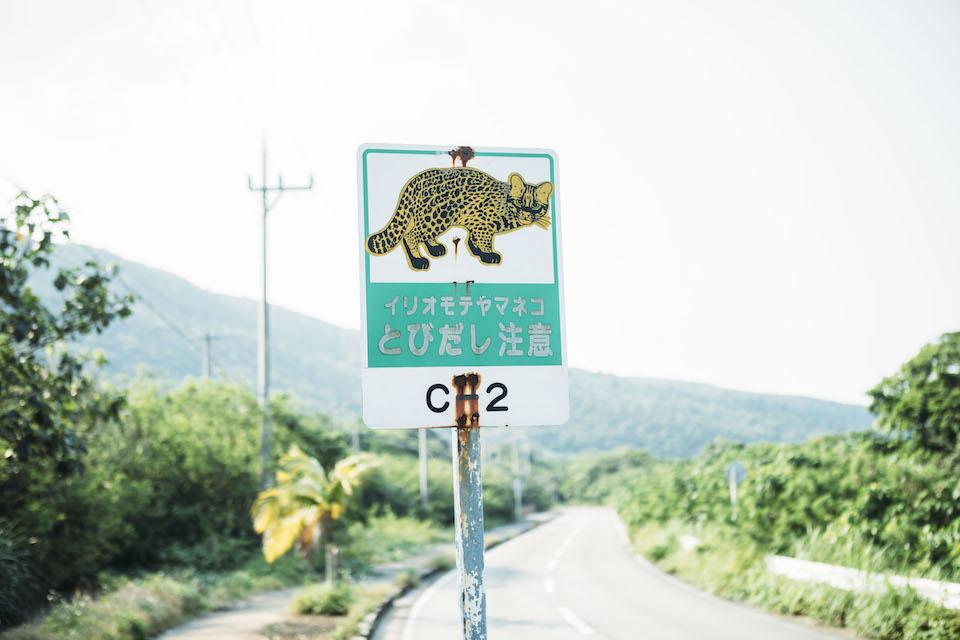 幹線道路沿いのいたるところに掲げられているイリオモテヤマネコ飛び出し注意の立て看板。島内は基本的に制限速度は40キロ、村の中では30キロと定められている。