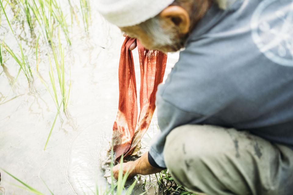 近くの水田で泥染めの実演をしてくれる金星さん。泥染めには、退色防止や防虫効果、消臭作用など様々な効果があるという。