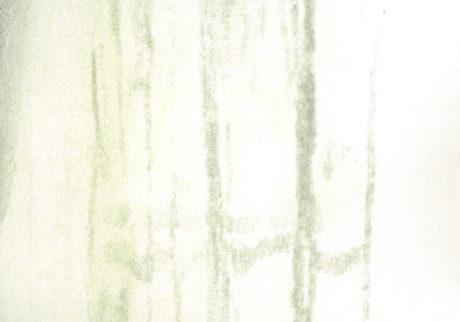 今日1日を、このイラストと。高原 颯時 vol.7