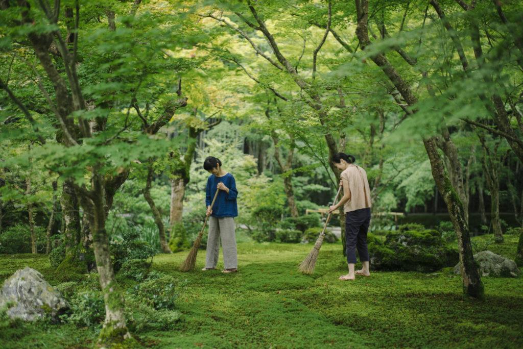 苔の名刹・園光寺で行う 早朝の苔庭作務と座禅体験