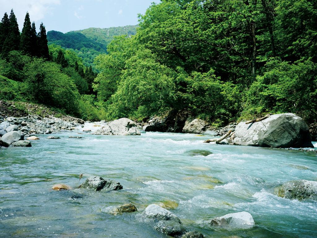国の天然記念物にも指定されている小滝川ヒスイ峡。ここから流れ出たヒスイはやがて海岸へとたどり着く。