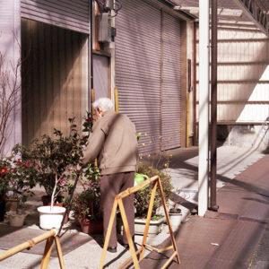 今月の写真家、今日の一枚。<i>八木 孝太 vol.19</i>