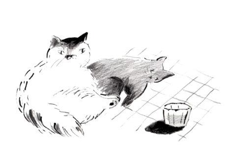 今日1日を、このイラストと。植松しんこ vol.4