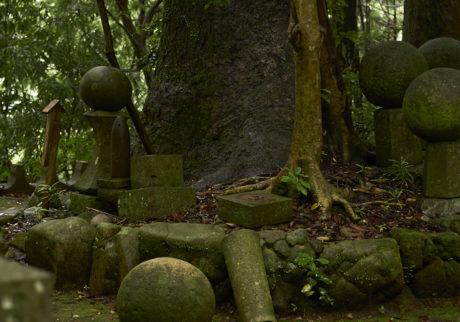 ここの木々の緑や石には、それぞれに声があるようにさえ思えてくる。普通ではないんだ、と感じる場所だった。