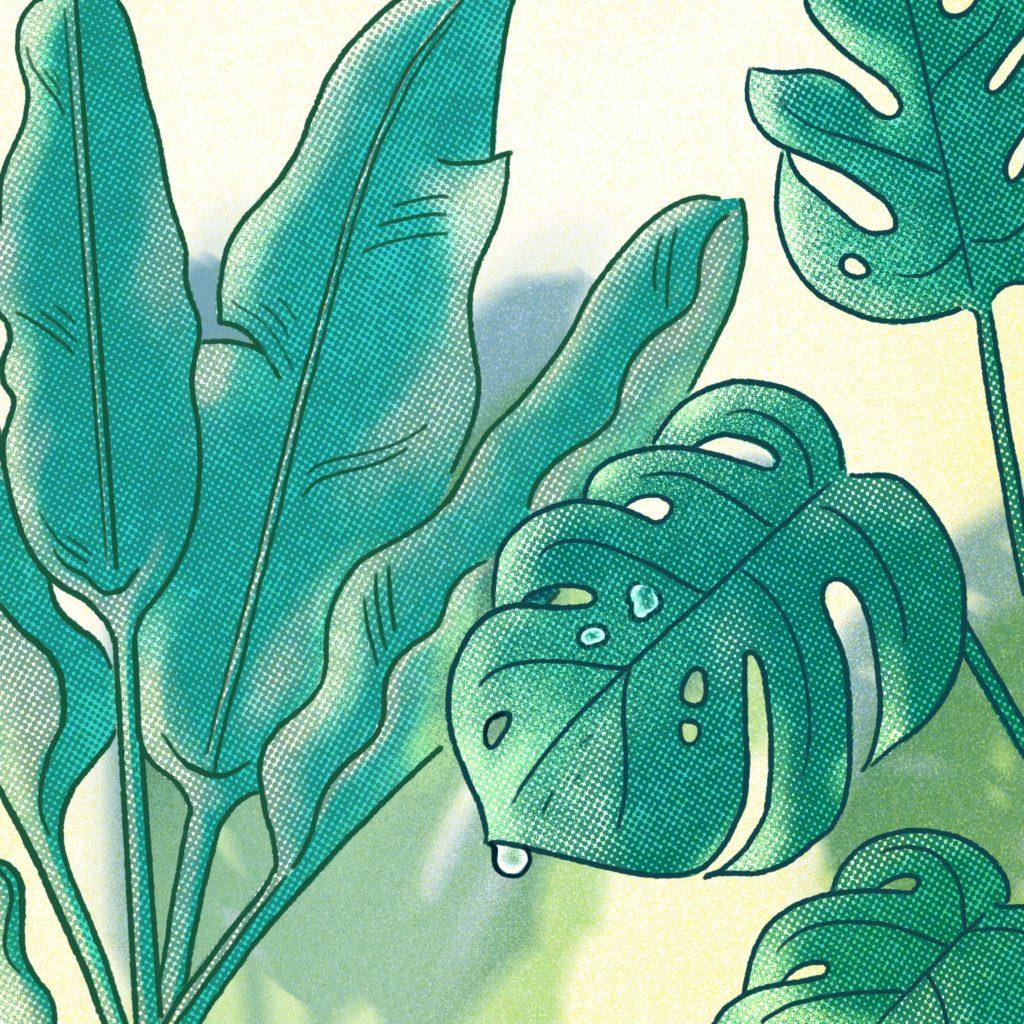 17-Plants