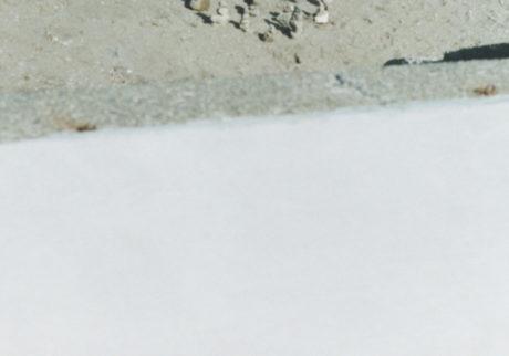 今月の写真家、今日の一枚。小室野乃華 vol.4