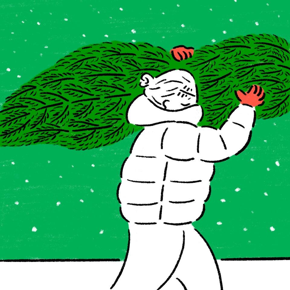24_部屋狭いのに本物のツリーを運ぶ