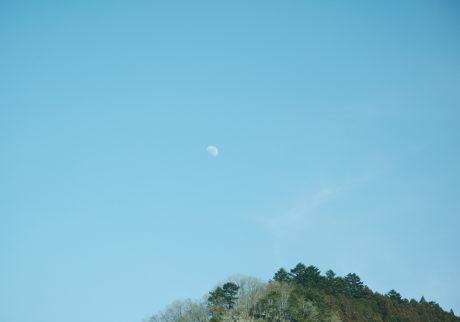 今月の写真家、今日の一枚。川村恵理 vol.2