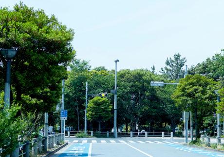 今月の写真家、今日の一枚。川村恵理 vol.3