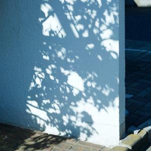 今月の写真家、今日の一枚。<i>川村恵理 vol.20</i>
