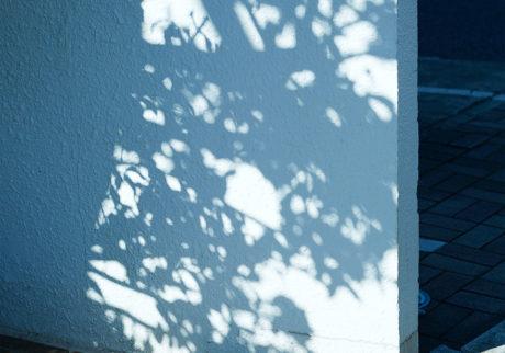 世田谷でみた影