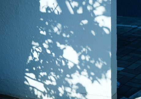 今月の写真家、今日の一枚。川村恵理 vol.20