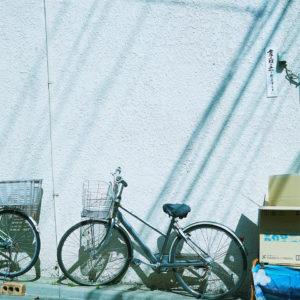 今月の写真家、今日の一枚。<i>川村恵理 vol.24</i>