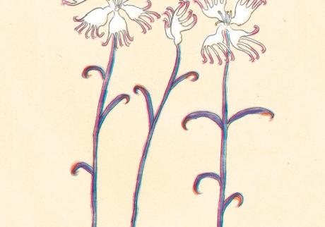 今日1日を、このイラストと。大塚文香 vol.1