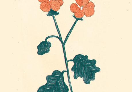 今日1日を、このイラストと。大塚文香 vol.17