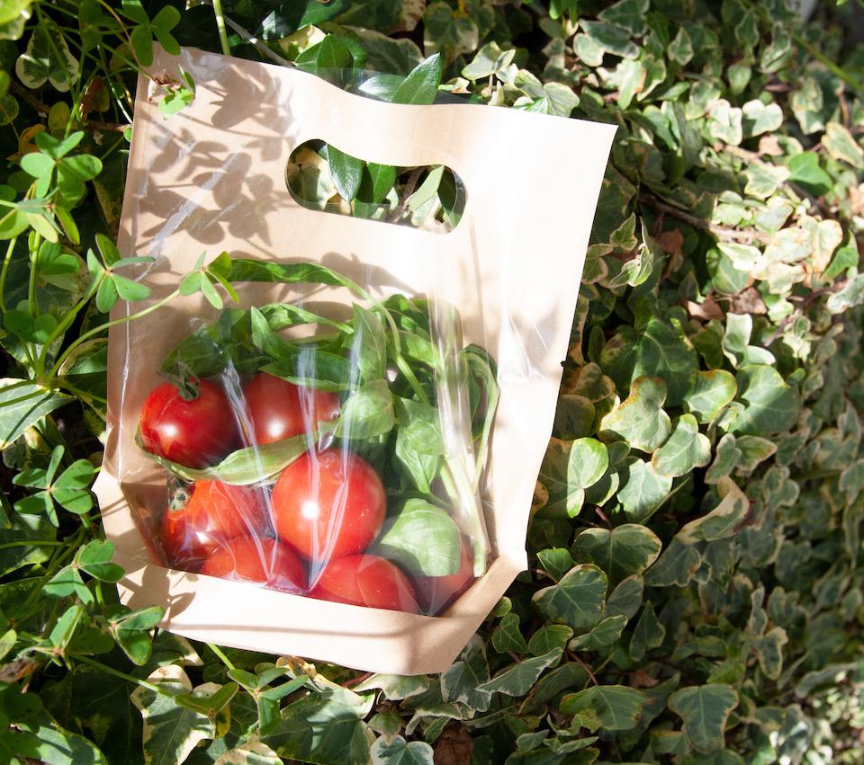 トマトの名産地としても知られる高知。糖度の高さが特徴。