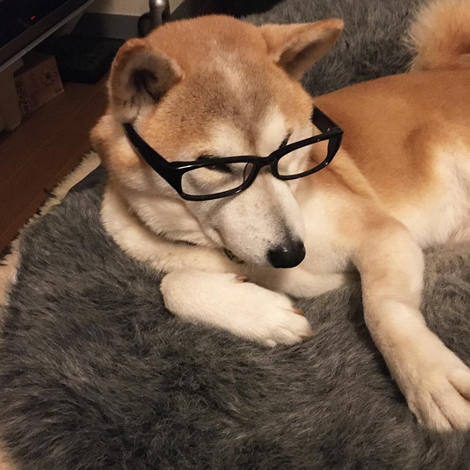 老眼鏡始めました。