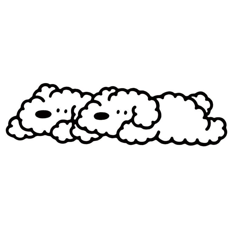 双子座 5月21日 - 6月20日生まれ