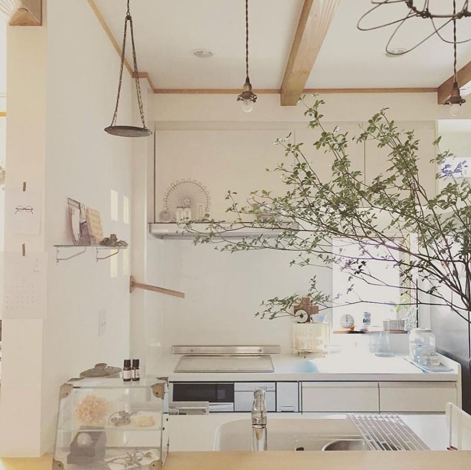 使い勝手のいい 台所と料理道具 小さいけど好きが詰まった私のキッチン