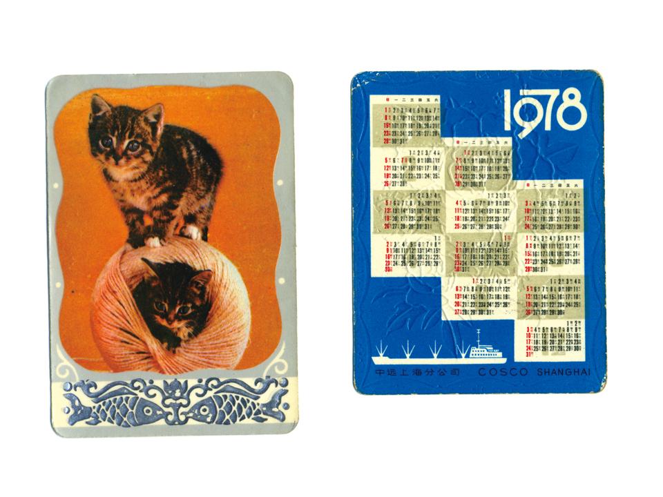 北京で見つけた猫ちゃん1978。