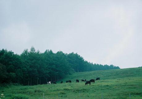 今月の写真家、今日の一枚。大林直行 vol.10