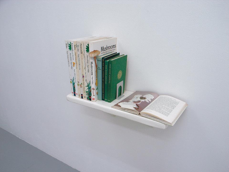 """The cropped illustrated book"" at Kenji Taki Gallery, Nagoya 2006      photo : Eiji Watanabe"