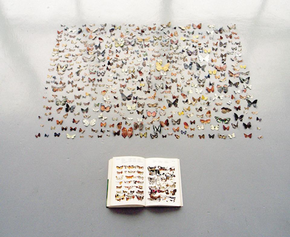 """ Butterfly's eye view ""  at Kenji Taki Gallery, Nagoya 2006       photo : Eiji Watanabe"