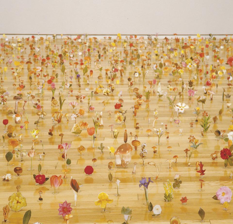 """Garden of the appellation""  - installation view at Tokyo Opera City Art Gallery 2001 -       photo: Tetsuo Ito     courtesy: Kenji Taki Gallery"