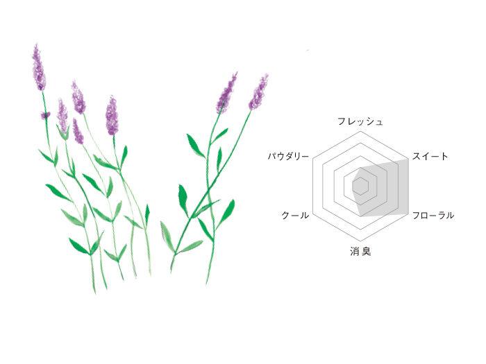 glade-illust08b