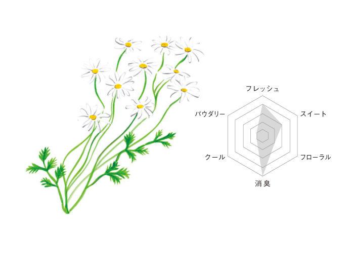 glade-illust03b