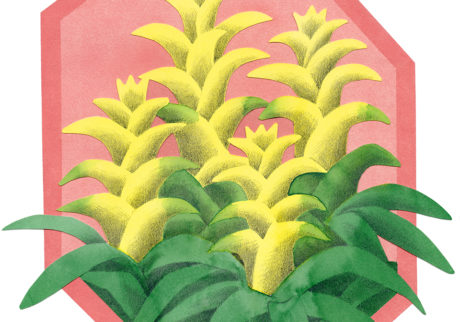今日1日を、このイラストと。菊野 友美 vol.10