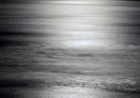 今月の写真家、今日の一枚。中野道 vol.13