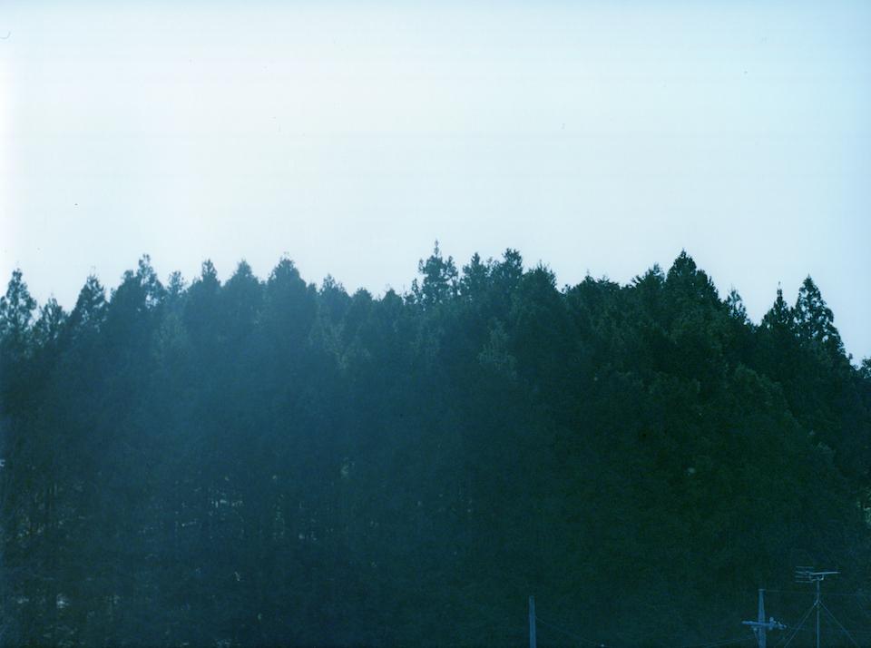 『静かなところにある美しさ』。#13