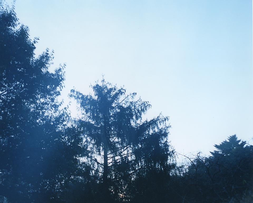 『静かなところにある美しさ』。#19
