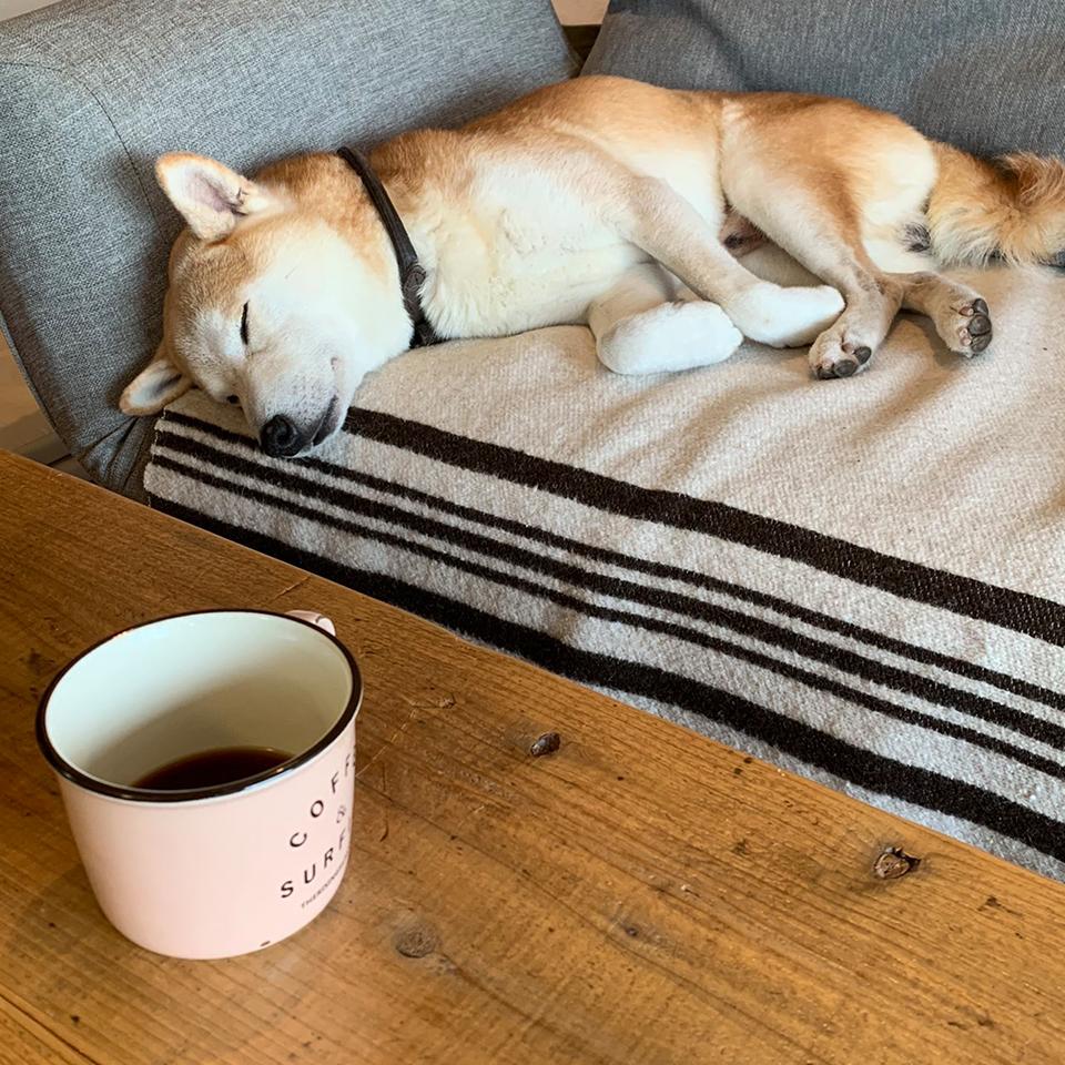 お昼寝前にはコーヒーをね。